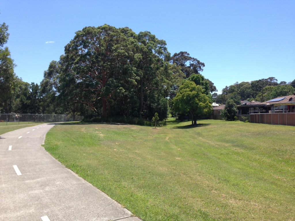 Looking north from Vista Pde Kotara, the present day cycle track veers away to the left of the original rail line