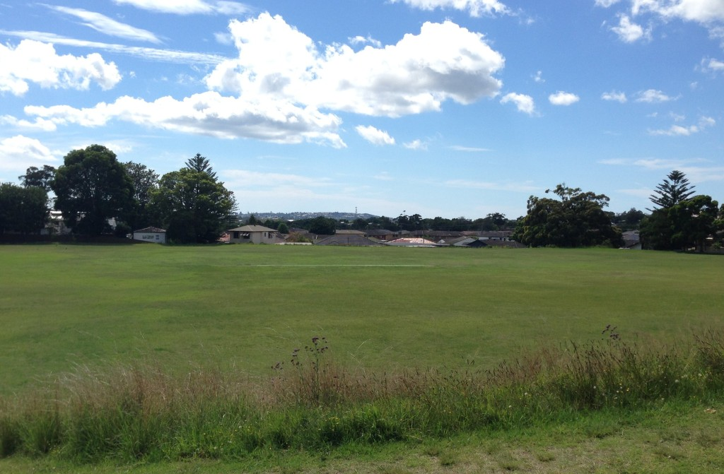 Lewis Oval